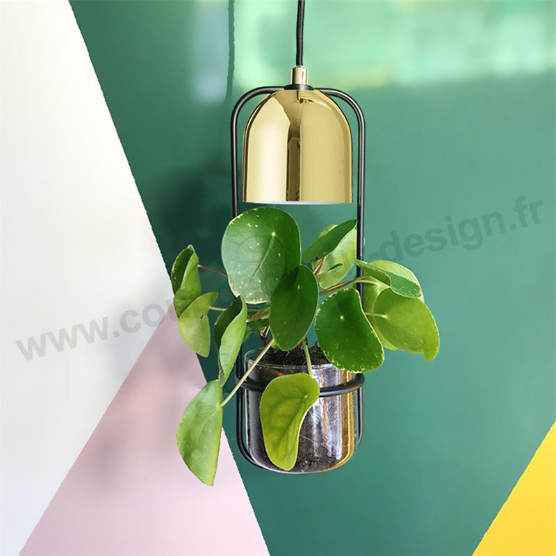 Suspension luminaire avec plante Bloomingville - Tropicale