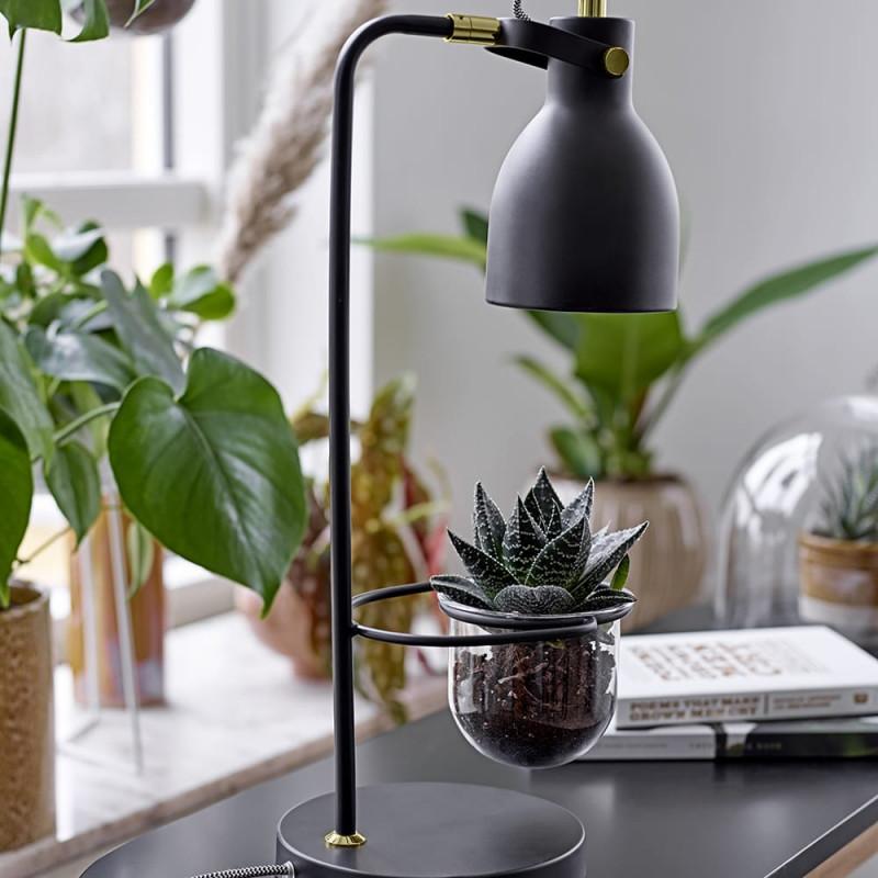 Lampe noire porte plante verte Bloomingville - Plant
